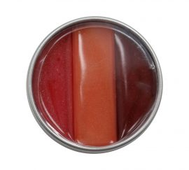 MARY-KATE AND ASHLEY LIP GLOSS, REALLY RED #70746 0.17 OZ